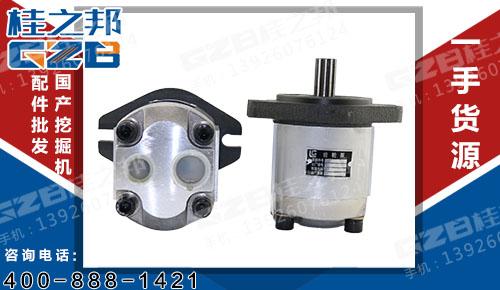 柳工挖掘机配件批发 发动机先导齿轮泵  11C0122